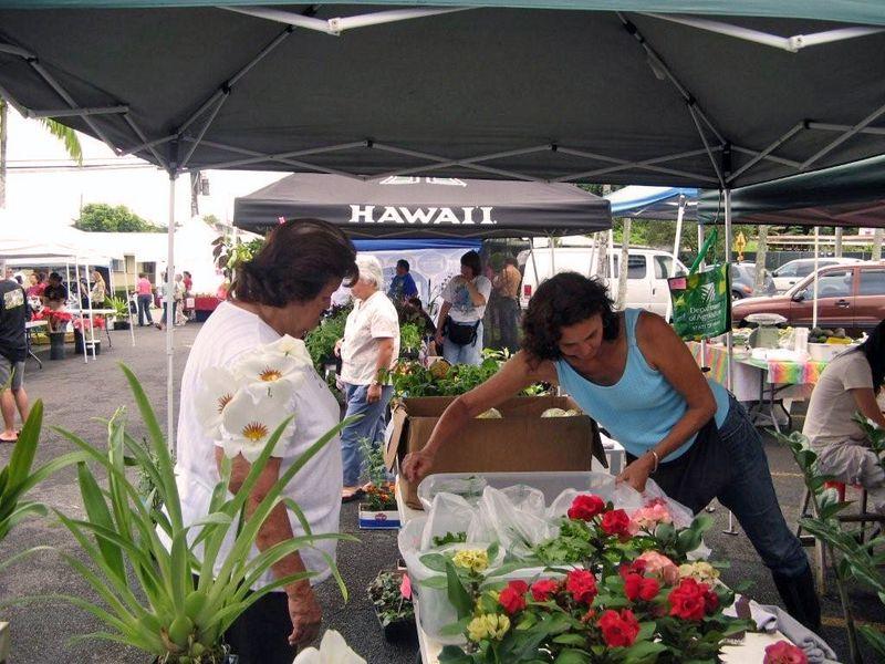 Kinoole farmers market 2 012