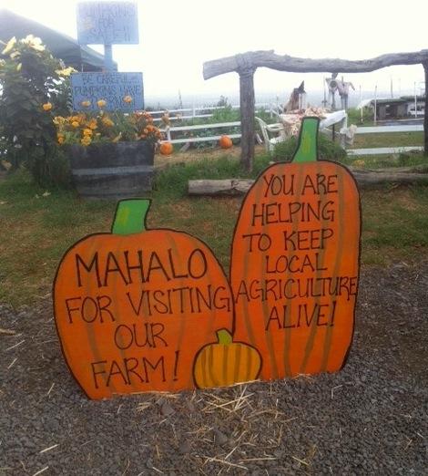 Mahalo for visiting