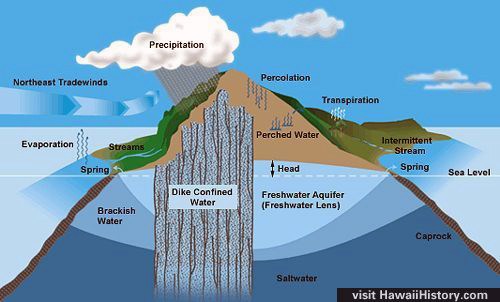 Water percolation percolation wat percolation water cycle definition images pictures ccuart Image collections
