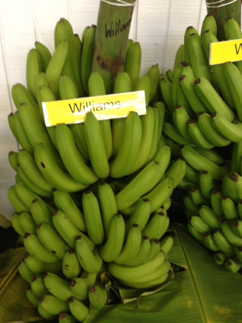 Applebananas